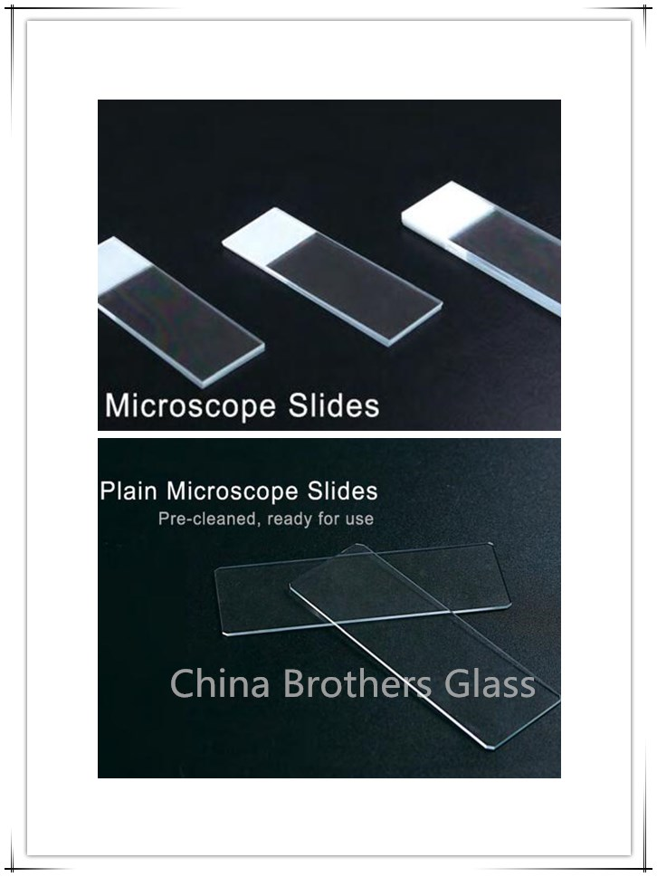 Clear/Frosted Microscope Slide