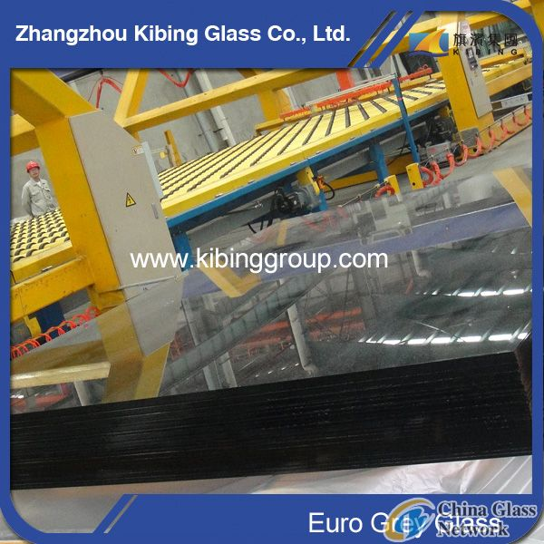 8mm Euro Grey Float Glass