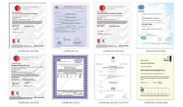 ali-Certificate.jpg