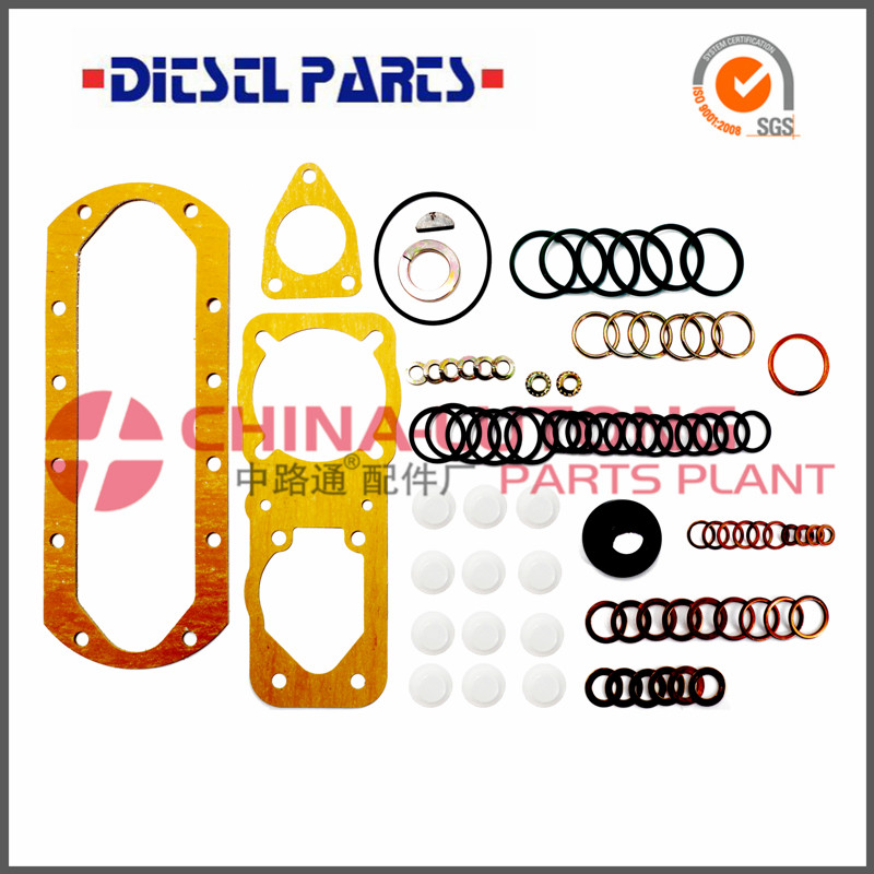 Ve Pump Repair Kit 2 417 010 001 Fuel Injector Pump Repair kit For Engine Fuel Ve Parts