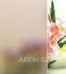 Plain Acid Etched Glass