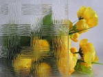 Clear Patterned glass-Woven