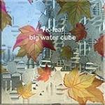 YK-leaf big water cube/Digital Printed Glass
