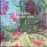 Digital Printed Glass/YK-Lotus big water cube