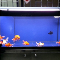 5 - 12 mm Lucid Glass Aquarium