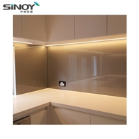China Fancy Lacquered Glass Wall with double FENZI coating