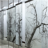 Art Glass Digital Printing Glass